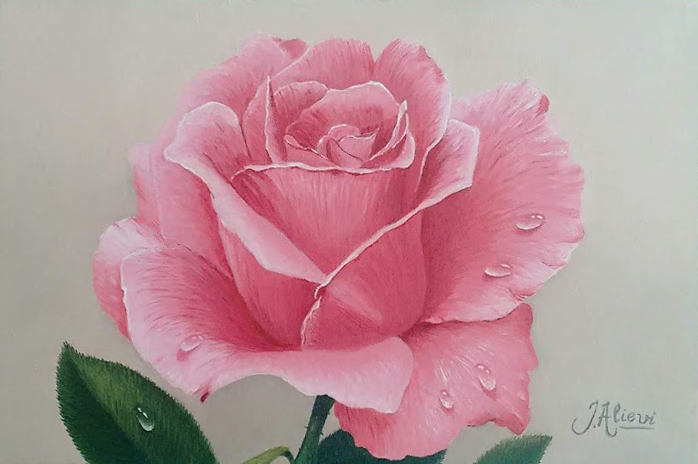 Rosa - Pintura a Óleo por Jair Alievi