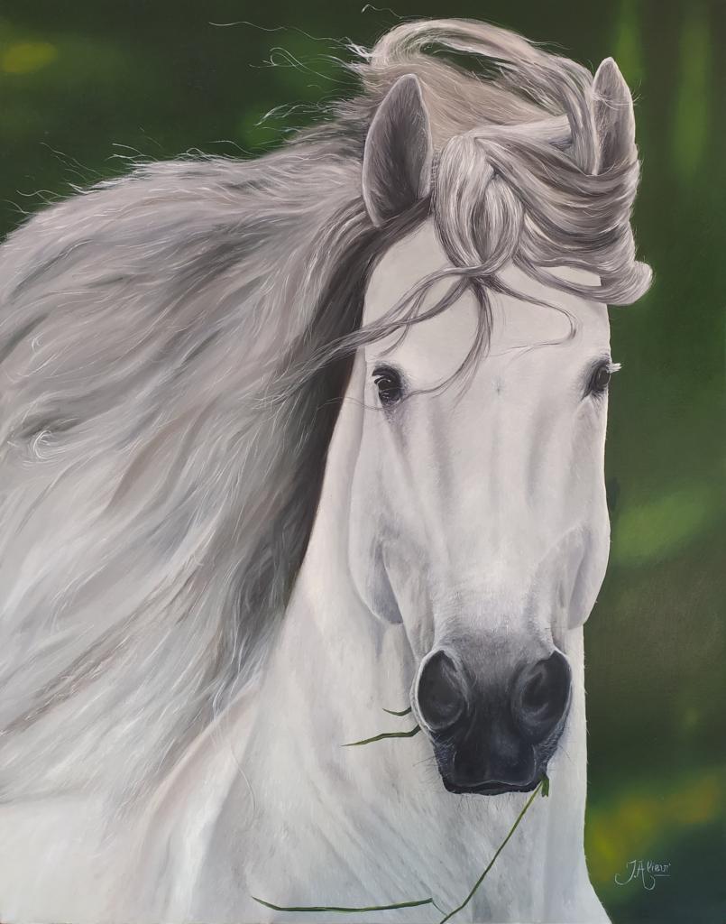 Pintura de um cavalo branco por Jair Alievi